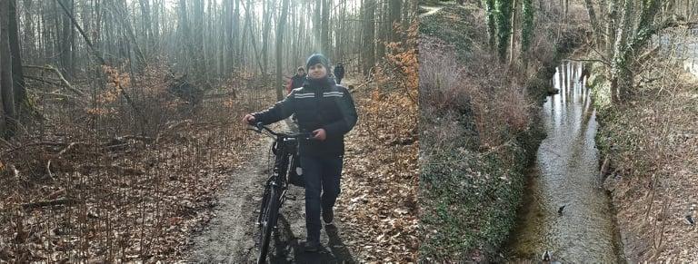 Im Wald / Bach mit Enten