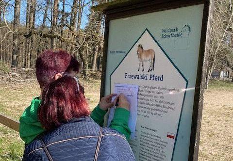Beim Info-Schild über Pferde und Quiz